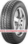 Avon Ice Touring 205/55 R16 91T