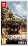 Headup Games Trüberbrook (Switch)