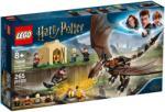 LEGO Harry Potter - Magyar mennydörgő trimágus kihívás (75946)