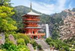 Castorland Seiganto-ji Temple, Japan - 1000 piese (103201) Puzzle