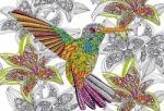 Educa Hummingbird - 300 piese (17083) Puzzle