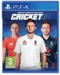 Big Ant Studios Cricket 19 (PS4) Software - jocuri