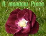 A Meadow Piece (PC) Jocuri PC
