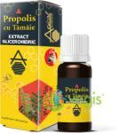 Apicolscience Propolis cu Tamaie Extract Glicerohidric 30ml