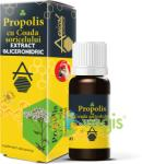 Apicolscience Propolis cu Coada Soricelului Extract Glicerohidric 30ml