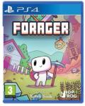 Humble Bundle Forager (PS4) Játékprogram