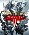 Larian Studios Divinity Original Sin II (PC) Software - jocuri