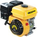 Gospodarul Profesionist GP-170F (PMP0024) Generator
