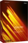 MAGIX Vegas Pro 17 Edit (ANR008850ESD)