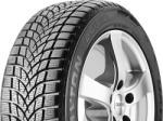 Dayton DW510 145/70 R13 71T Автомобилни гуми