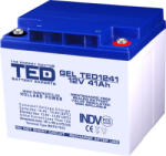 TED Electric Acumulator 12V 41A GEL AGM VRLA 197x165x171mm M6 TED Battery ExpertHolland (GEL TED1241)