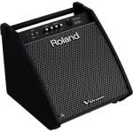 Roland PM-200 Monitor de scena