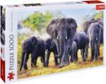 Trefl Пъзел Trefl от 1000 части - Африкански слонове (10442)