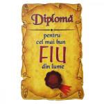 AleXer Magnet Diploma pentru Cel mai bun FIU din lume, lemn