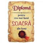 AleXer Magnet Diploma pentru Cea mai buna SOACRA din lume, lemn