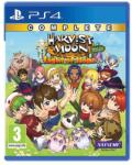 Rising Star Games Harvest Moon Light of Hope [Special Edition-Complete] (PS4) Software - jocuri