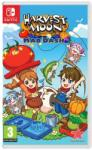 Rising Star Games Harvest Moon Mad Dash (Switch) Software - jocuri