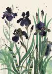 Bug Art Felicitare Black Irises