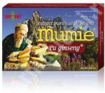 Damar General Trading Extract purificat de rasina Mumie cu Ginseng, 60 tablete, Damar General Trading