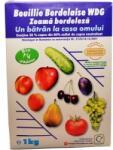 Cerexagri Fungicid Bouillie Bordelaise WDG-Zeama bordoleza(1 kg) Cerexagri