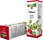 AdNatura Extract Gliceric Paducel Frunze-Flori AdNatura 50 ml