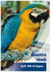 Pd önátírótömb A5 50x3 lapos vegykezelt papagáj mintás