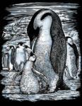 MAMMUT Pingvin, Ezüst képkarcoló (8250609) (Mammut8250609MS)