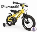 INJUSA Kawasaki 14